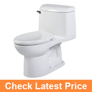 Best Flushing Toilets In 2019 Reviews And Buyer S Guide