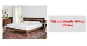 Tuft and Needle 10-inch Review